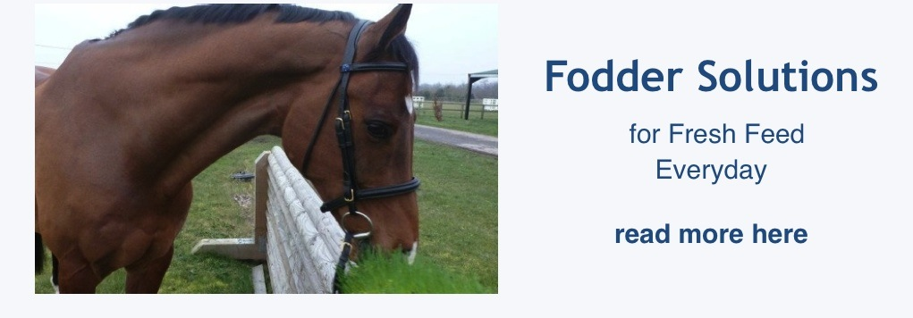 Fodder Solutions - Fresh Feed everyday for horses and livestock