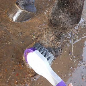 bucket brush in mud