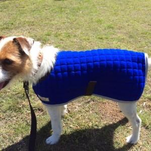 Dog Coat Fizz Royal Blue Grey