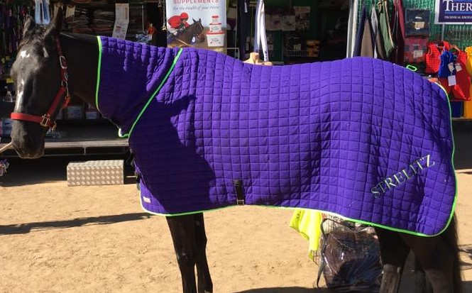 Thermatex Snood Rugs Horse Amp Hound Specialists