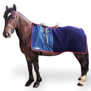 Horse And Hound Animal Care Specialists Anivac Bathing