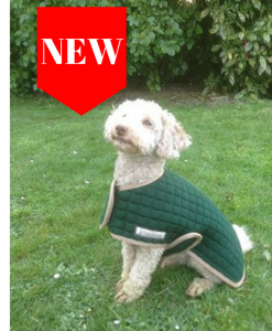 Open front dog coat New