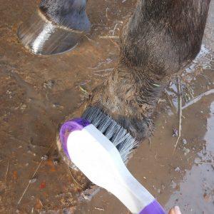 bucket brush in mud