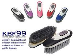 kbf99 dandy colours