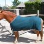 thermatex pony