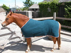 Horse Products Rugs