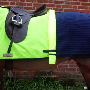 ANR Exercise Rug