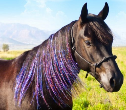 horse hair extension