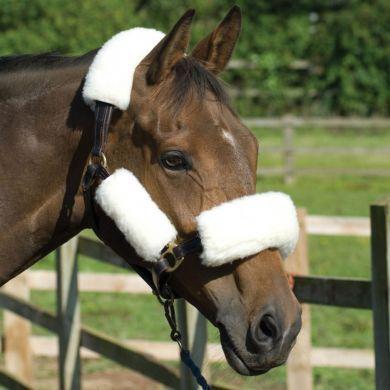 head collar set